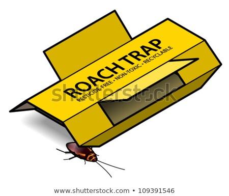 hamamböceği · karikatür · doğa · turuncu · kentsel · beyaz - stok fotoğraf © pcanzo