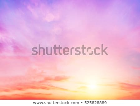 Soft hot pink clouds Stock photo © silkenphotography