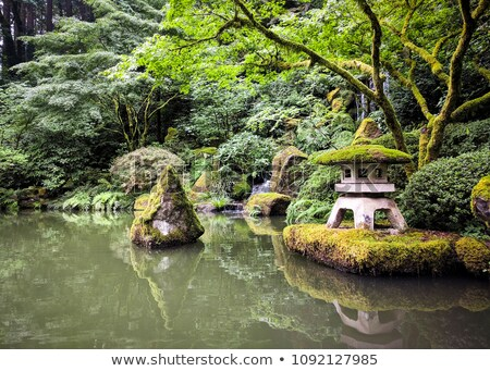 japanese stone lantern by water stream stock photo © davidgn
