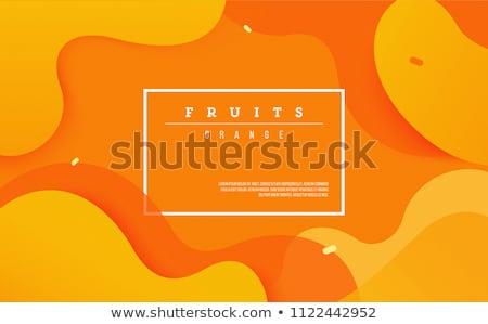 Oranje sjabloon pleinen grijs ruimte vector Stockfoto © vlastas
