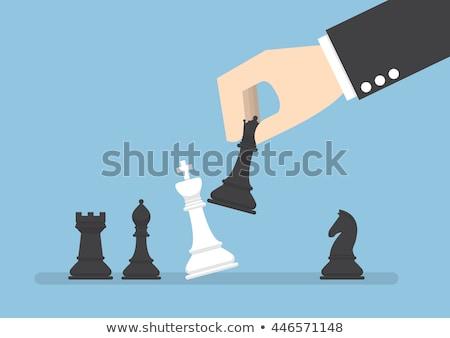 flat design of chess figures stock photo © elmiko