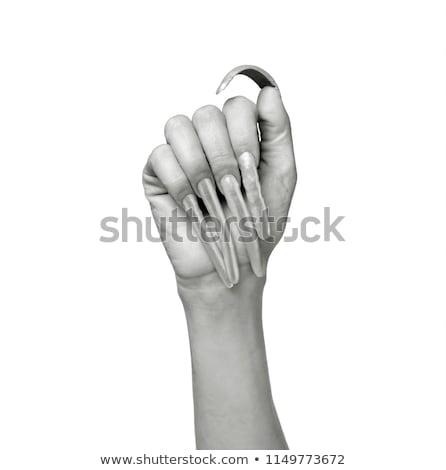 Longo prego unhas cristal jóias mulher Foto stock © kokimk
