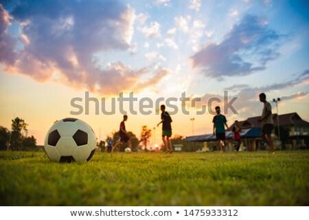 друзей · футбола · вентиляторы · футбольным · мячом · развлечения · отдыха - Сток-фото © lightsource