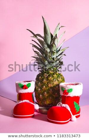 Christmas groet kerstboom tak ananas Stockfoto © marimorena