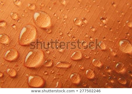 Narancs vízálló absztrakt kék szín ruha Stock fotó © Taiga