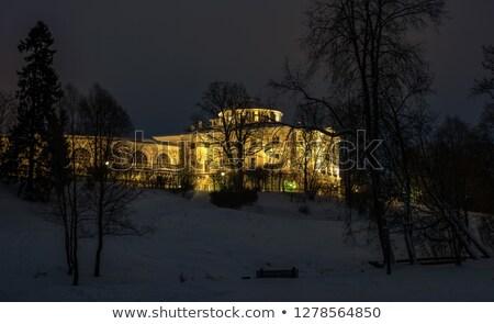 Winter landscape of the Pavlovsk garden and palace. Stock photo © Pilgrimego