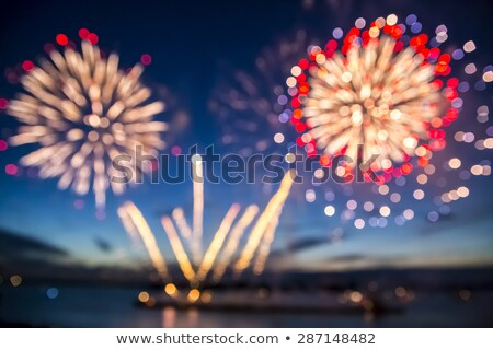 Firework over the water in the night sky Stock photo © All32