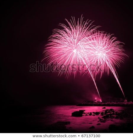 Stock photo: Magenta Fireworks