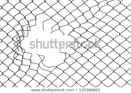 цепь ссылку забор дыра копия пространства изолированный Сток-фото © Lightsource