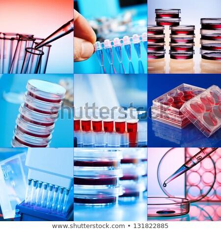 Geneeskunde wetenschap collage test atomair Stockfoto © x7vector