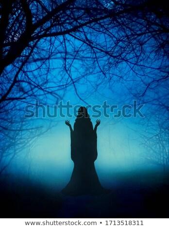 Bruja luz de la luna ilustración mujer funny Navidad Foto stock © adrenalina