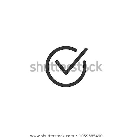 Ikon felirat siker csekk választás vektor Stock fotó © kiddaikiddee