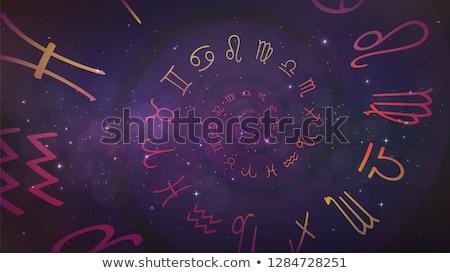 Astrologia vetor traçar zodíaco sinais casas Foto stock © m_pavlov