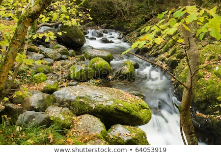 Foto stock: Famous Aira Force Waterfall In Lake District