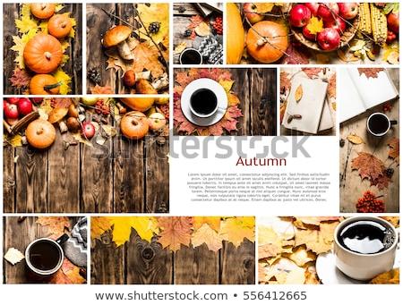 coffee photo collage stock photo © stevanovicigor