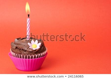 ストックフォト: Miniature Chocolate Cupcake With Candle