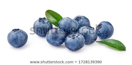 Blueberries With Leaves Stock photo © ConceptCafe