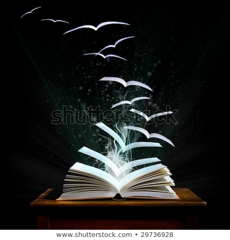 Magic book with pages transforming into birds Stock photo © Shevs