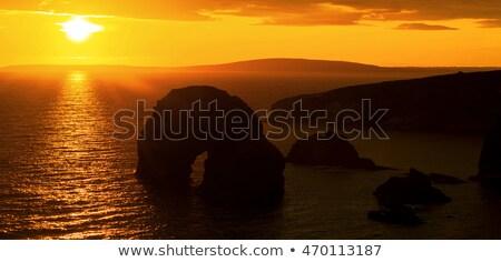 Güzel gün batımı sahil çim Stok fotoğraf © morrbyte