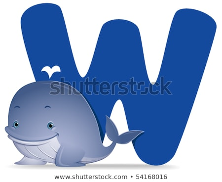 A letter W for whale Stock photo © bluering