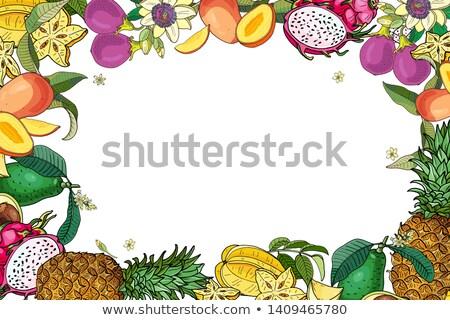rijp · vruchten · bloemen · frame · kers - stockfoto © natalya_zimina