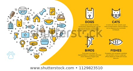 Cat care pet shop flat colorful icons stock photo © vectorikart