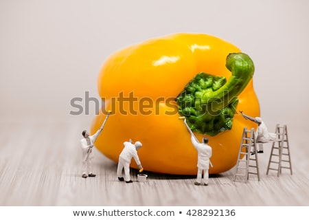 Painters coloring bell pepper. Macro photo Stock photo © Kirill_M