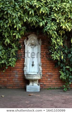 Starożytnych mur fontanna wody ściany projektu Zdjęcia stock © Digifoodstock