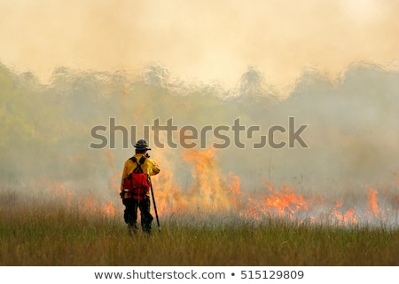 Fireman at the wild fire scene Stock photo © bluering