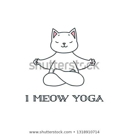 Yoga lotus template. EPS 8 Stock photo © beholdereye