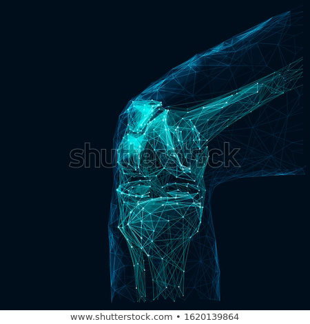 human legs and knee joint anatomy abstract background stock photo © tefi