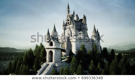 Sprookje kasteel fabelachtig toren balkon Stockfoto © bedlovskaya