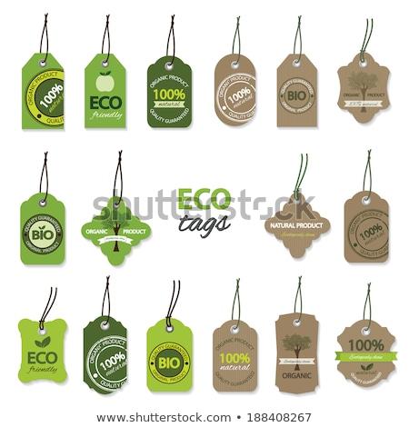 big green eco labels set stock photo © cammep