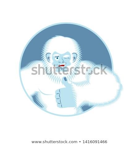 Yeti thumbs up. Bigfoot winks emoji. Abominable snowman cheerful Stock photo © popaukropa