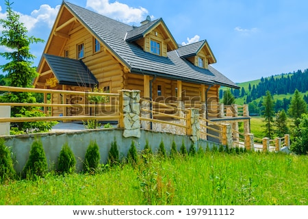 spring landscape with wooden houses in the mountains stock photo © kotenko