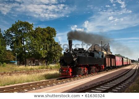 Velho vapor Alemanha preto locomotiva colina Foto stock © compuinfoto