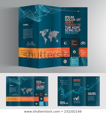 минимальный синий профессиональных брошюра шаблон дизайна Сток-фото © SArts