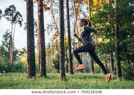 donna · jogging · esterna · foresta · estate · ragazza - foto d'archivio © is2
