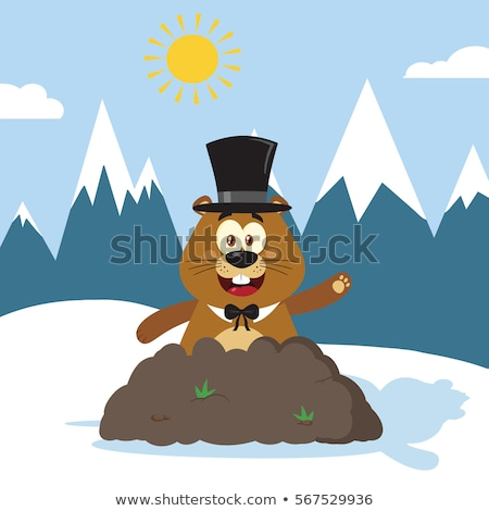 Happy Marmot Cartoon Mascot Character With Cylinder Hat Waving In Groundhog Day Stock photo © hittoon