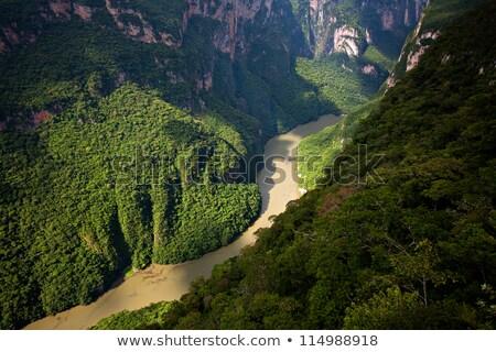 Turista desfiladeiro México rio tour barco Foto stock © THP