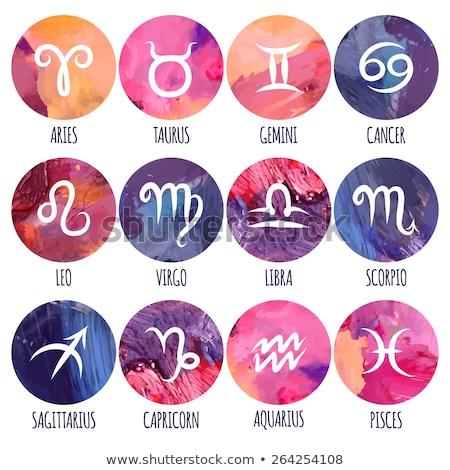 Horóscopo zodíaco assinar astrologia ícone Foto stock © Krisdog