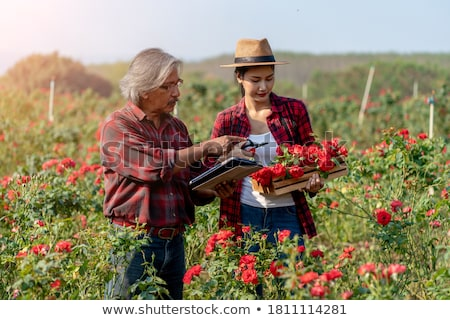 Pretty young woman with digital tablet in the flower garden Stock photo © boggy