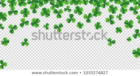 Banner przezroczysty charakter projektu liści tle Zdjęcia stock © cammep