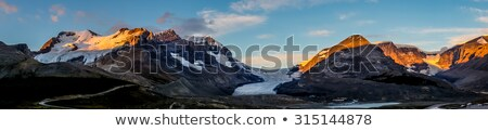 Mount Athabasca in Canadian Rockies Stock photo © benkrut