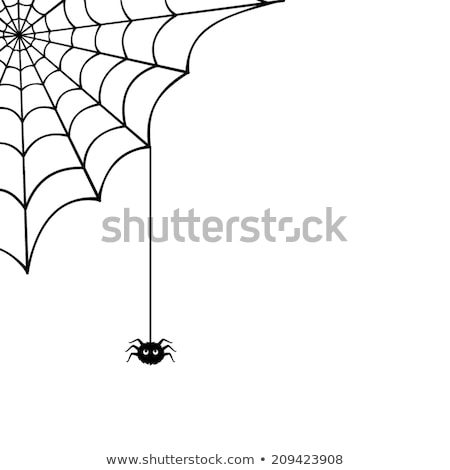 Stock photo: A spider on the web halloween template