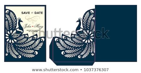 Kék páva születésnap sablon kártya illusztráció Stock fotó © bluering