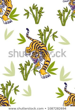 Tigre bambú forestales ilustración árbol sonrisa Foto stock © colematt