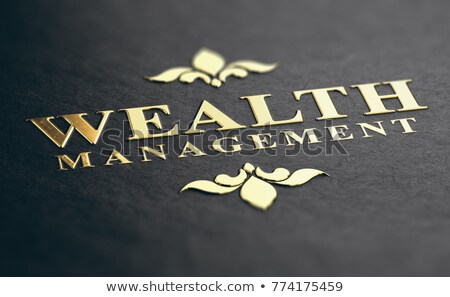 Wealth Management Advisory Service. Financial Solutions. Stock photo © olivier_le_moal