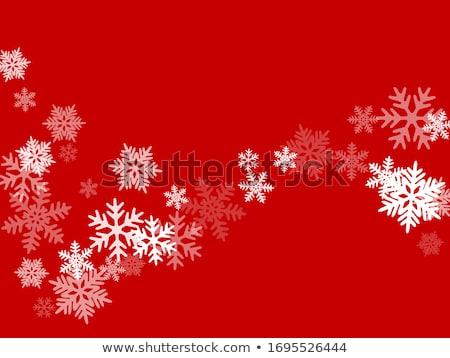 Christmas płatki śniegu karty zimą wakacje srebrny Zdjęcia stock © SwillSkill
