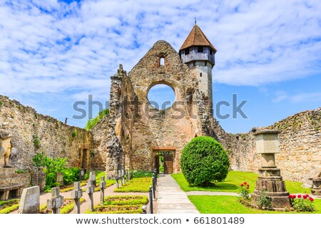 cistercian abbey carta stock photo © grafvision